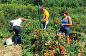 broome county - community service